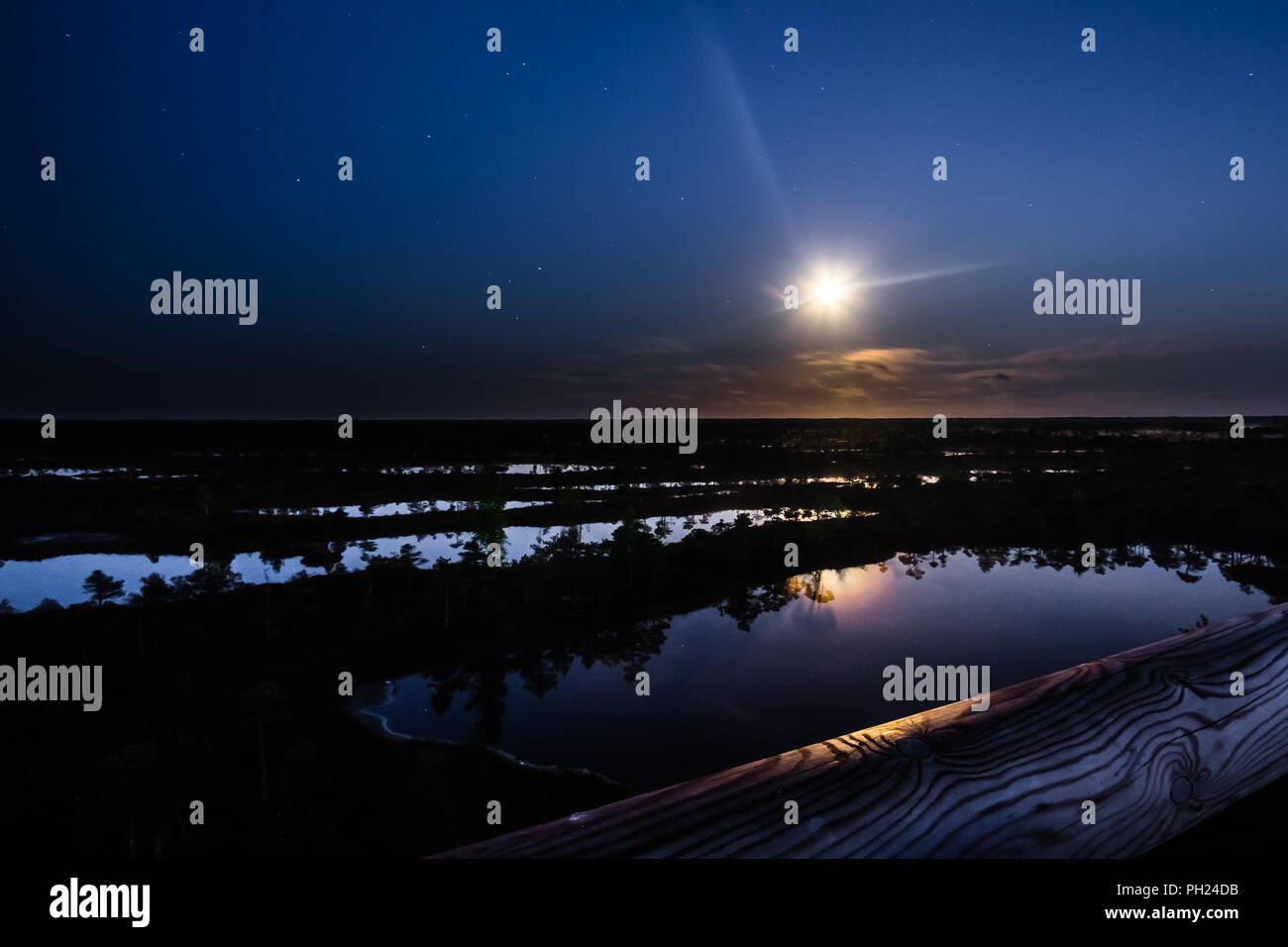Kemeru swamp in Latvia. A night in June. - Stock Image