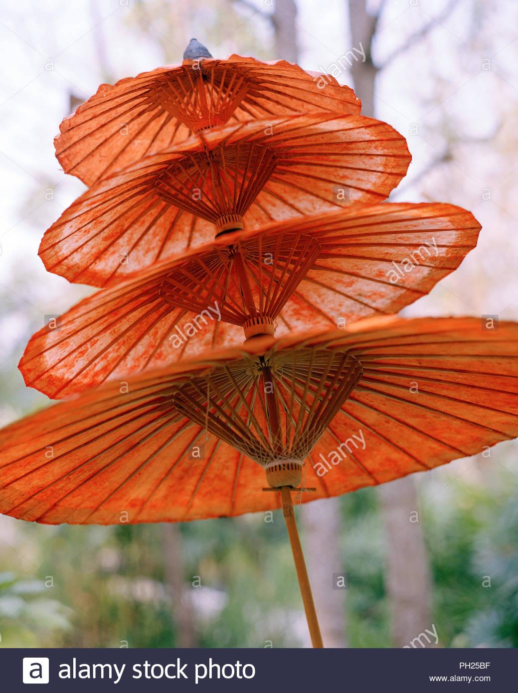 Orange umbrellas - Stock Image