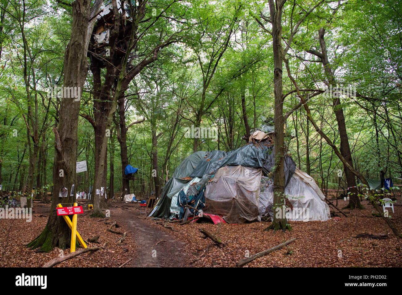Germany, Morschenich. 29th Aug, 2018. Activists have built tree houses and huts in the Hambach Forest. The camp will demonstrate against the clearing of the Hambach forest for opencast lignite mining. North Rhine-Westphalia's Prime Minister Laschet (CDU) will be asking the press questions on current political issues on 30.09.2018. In the centre is probably the heated location in the Hambach Forest. Credit: Christophe Gateau/dpa/Alamy Live News - Stock Image
