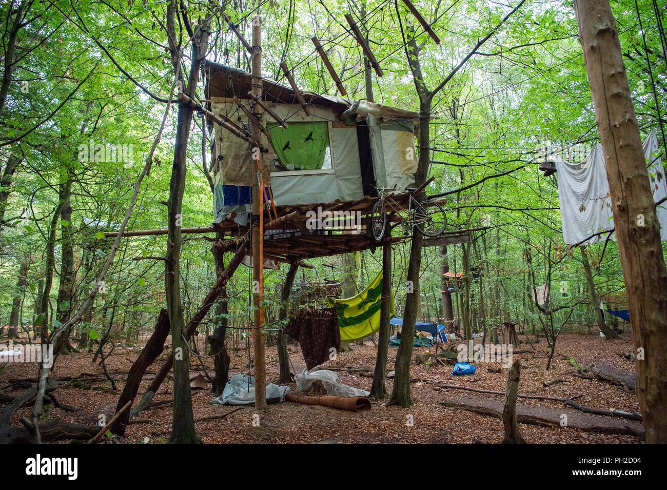 Germany, Morschenich. 29th Aug, 2018. Activists have built a tree house in the Hambach Forest. The camp will demonstrate against the clearing of the Hambach forest for opencast lignite mining. North Rhine-Westphalia's Prime Minister Laschet (CDU) will be asking the press questions on current political issues on 30.09.2018. In the centre is probably the heated location in the Hambach Forest. Credit: Christophe Gateau/dpa/Alamy Live News - Stock Image