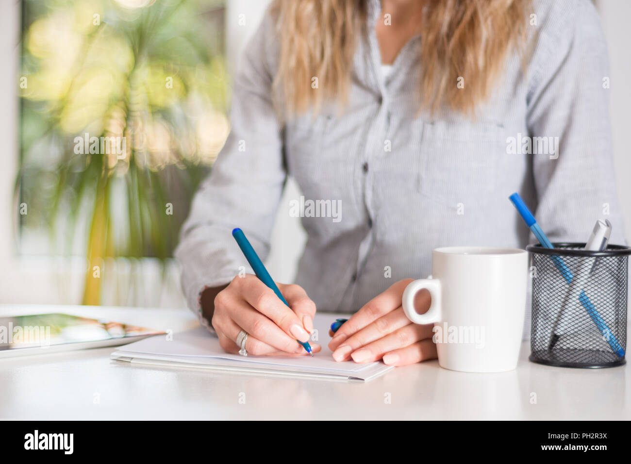 Business woman writing in document with pen at desk in modern office. Girl wears elegant shirt on strips. Big green blurred windows in background - Stock Image