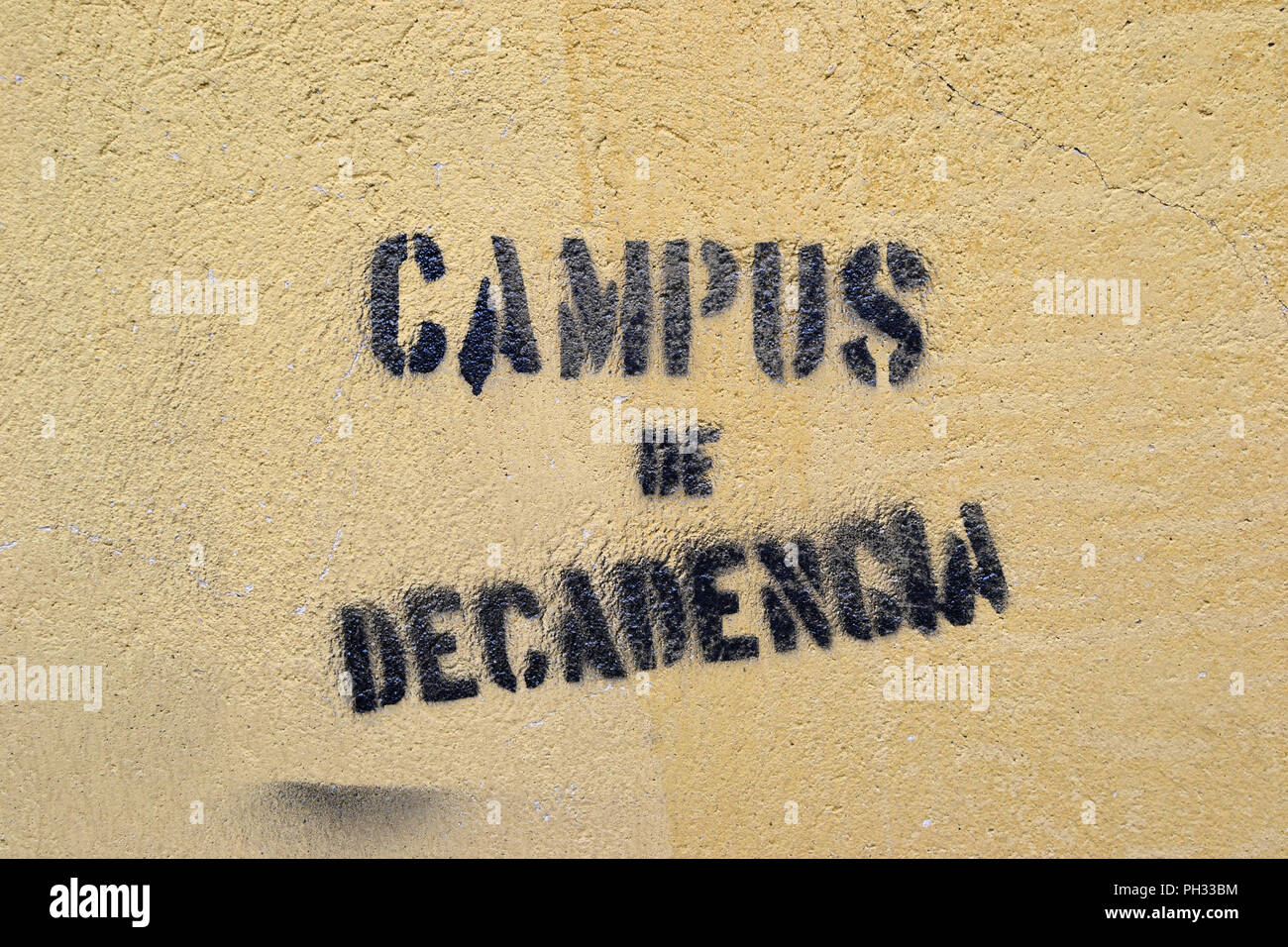 Stenciled Graffiti On A Wall At The Campus Of The University Of Oviedo In Oviedo Asturias Spain Claiming It To Be A Campus Of Decline