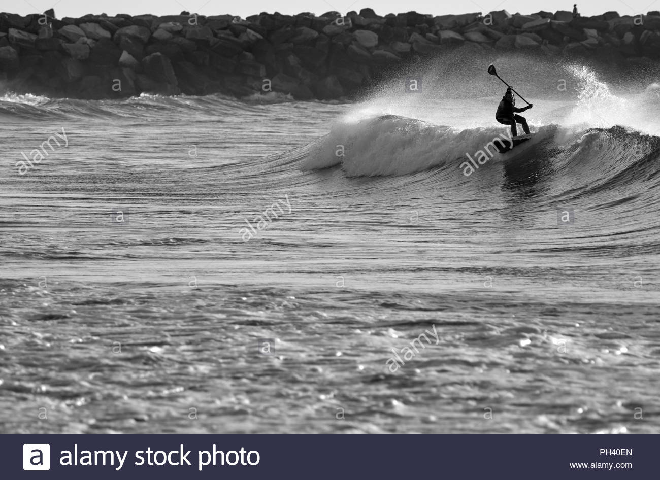 A black and white image capturing a male SUP rider surfing a moderate wave - backlit by the rising sun - at Turners Beach, Yamba, NSW, Australia. - Stock Image