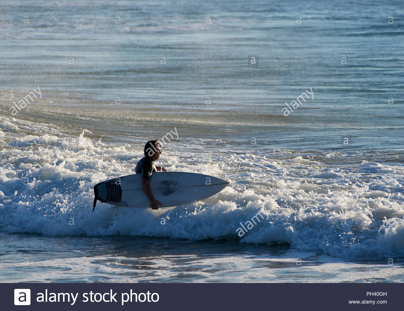 A man in a wet-suit, walks into the ocean with a surfboard under his arm, going for an early-morning surf; at Turners Beach, Yamba, NSW, Australia. Stock Photo