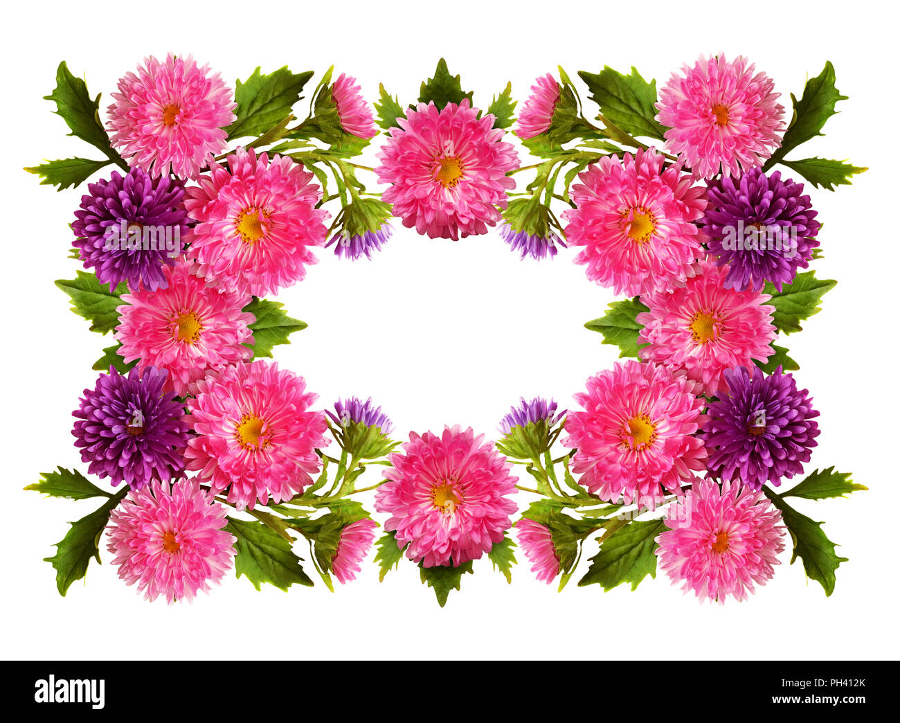 Aster Flowers In A Floral Frame Isolated On White Background Flat