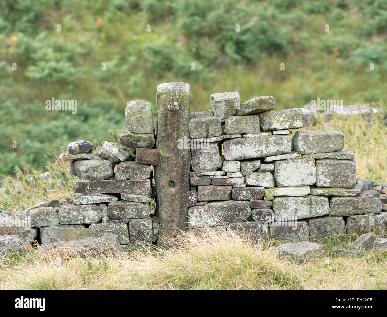 Stone gatepost in dry stone wall on the Bronté Way in West Yorkshire, near Haworth. - Stock Image