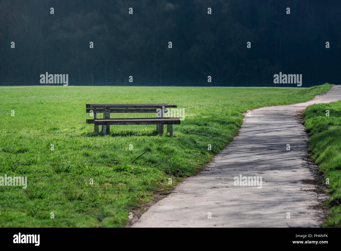 An alley for walking or running, crossing a green meadow and a wooden bench and a table on the side, on a  sunny day. Stock Photo