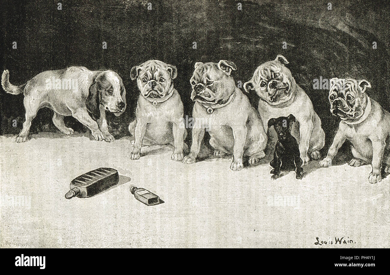 Throw physic to the dogs, I'll none of it.   Dogs looking warily at medicine bottles, drawn by by Louis Wain.  An illustration of a quote from Macbeth by Shakespeare - Stock Image