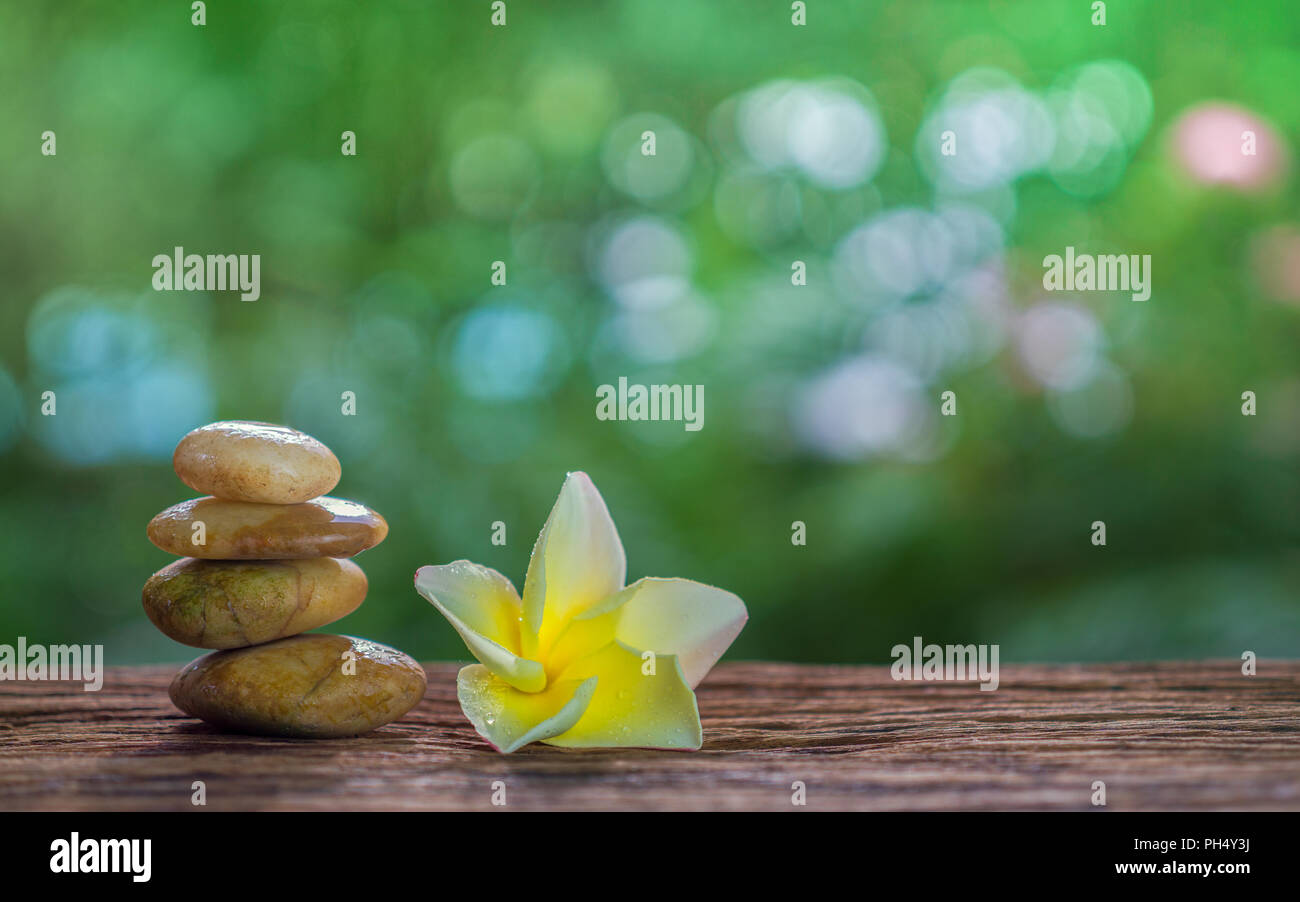 Balance Zen stones and yellow plumeria on wood with green bokeh background. Zen and Spa concept. - Stock Image