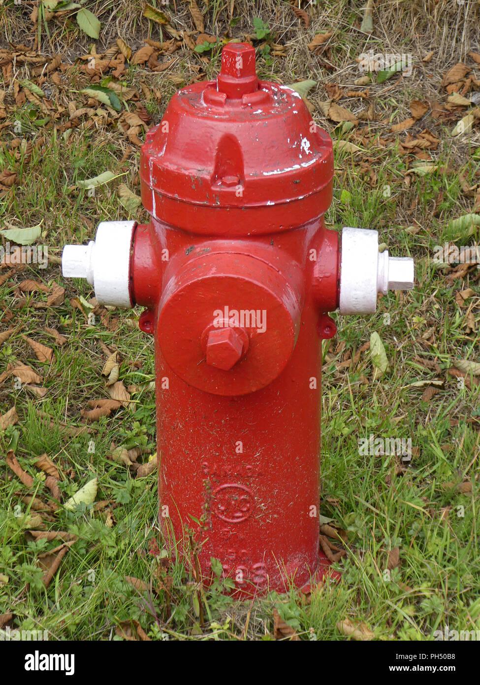 Fire Hydrant in British Columbia, Canada 2018 - Stock Image