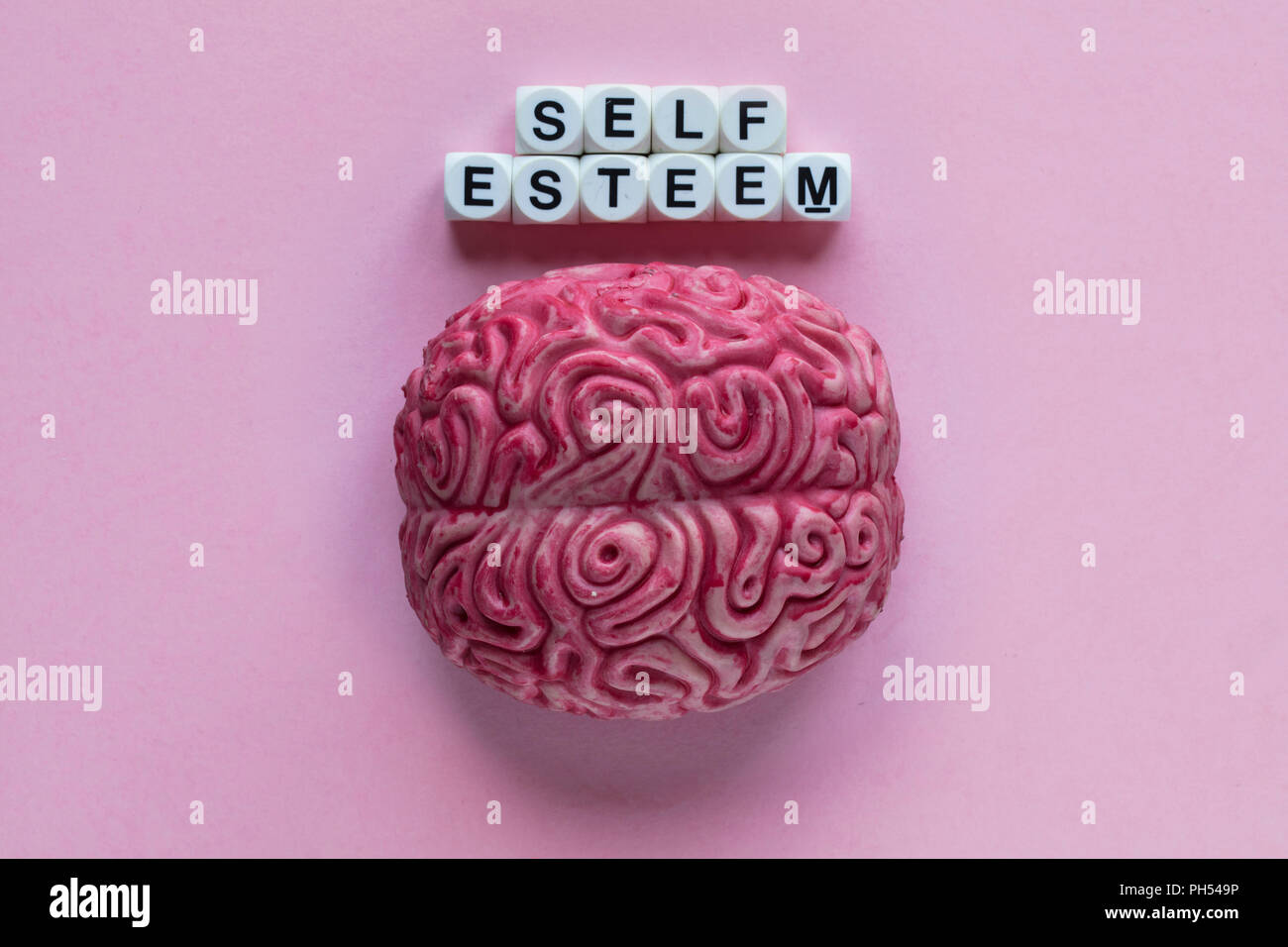 Human brain with the word self esteem. Mental health concept - Stock Image
