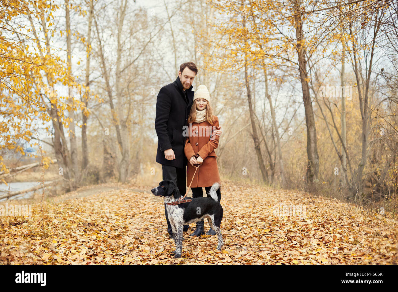 Couple in love on Valentine's day walking in the Park with the dog. The love and tenderness between a man and a woman. Valentine's day is a holiday of Stock Photo