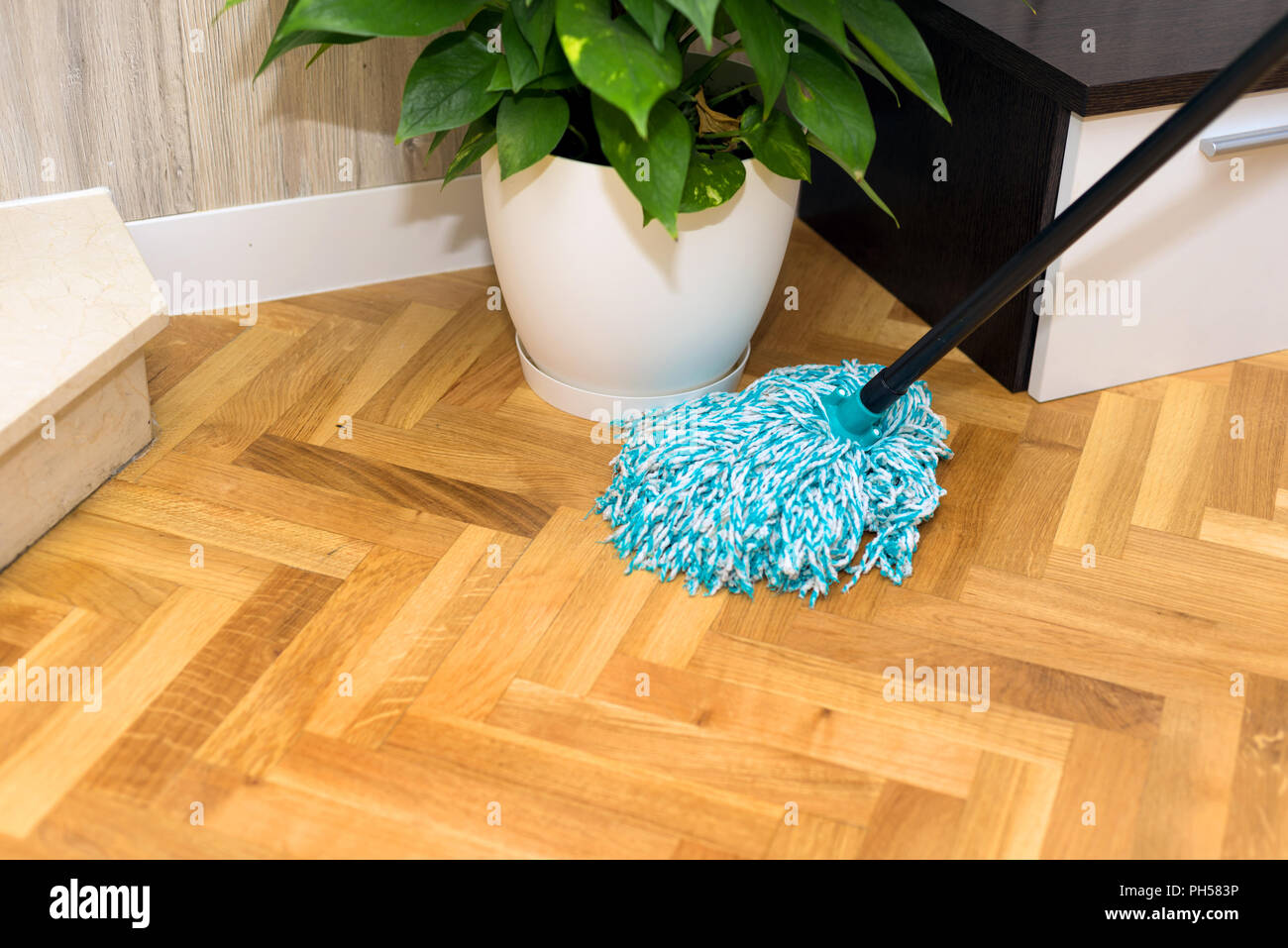 cleaning floor at home Stock Photo