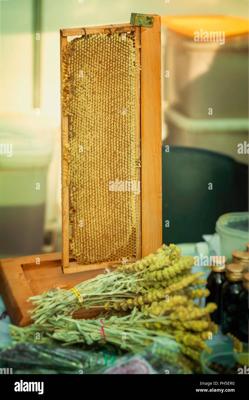 Honey in honeycombs, production of honey on farm market counter for healthy herb tea with antibacterial, antifungal, antiviral properties, farm marrket - Stock Image