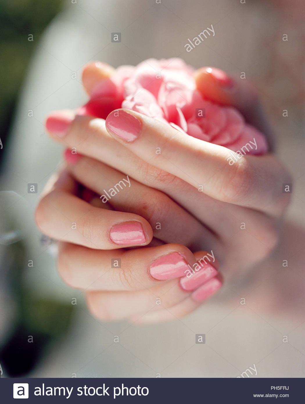 Woman's hands wearing pink nail polish - Stock Image