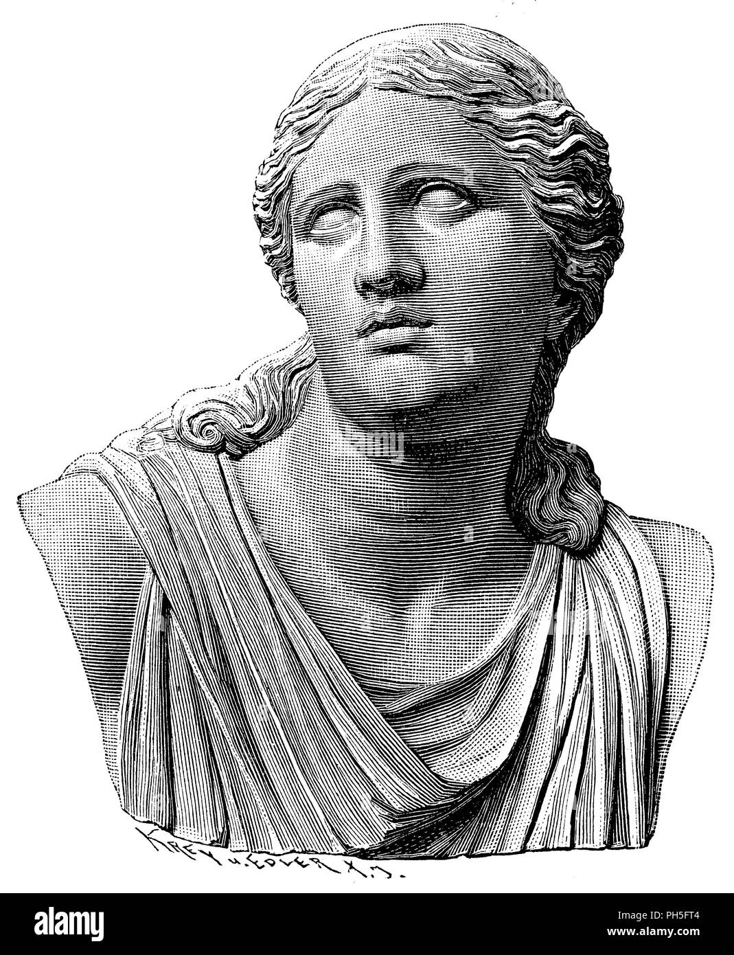 Head of Niobe. Marble statue in the Uffizi to Florence,   1899 - Stock Image