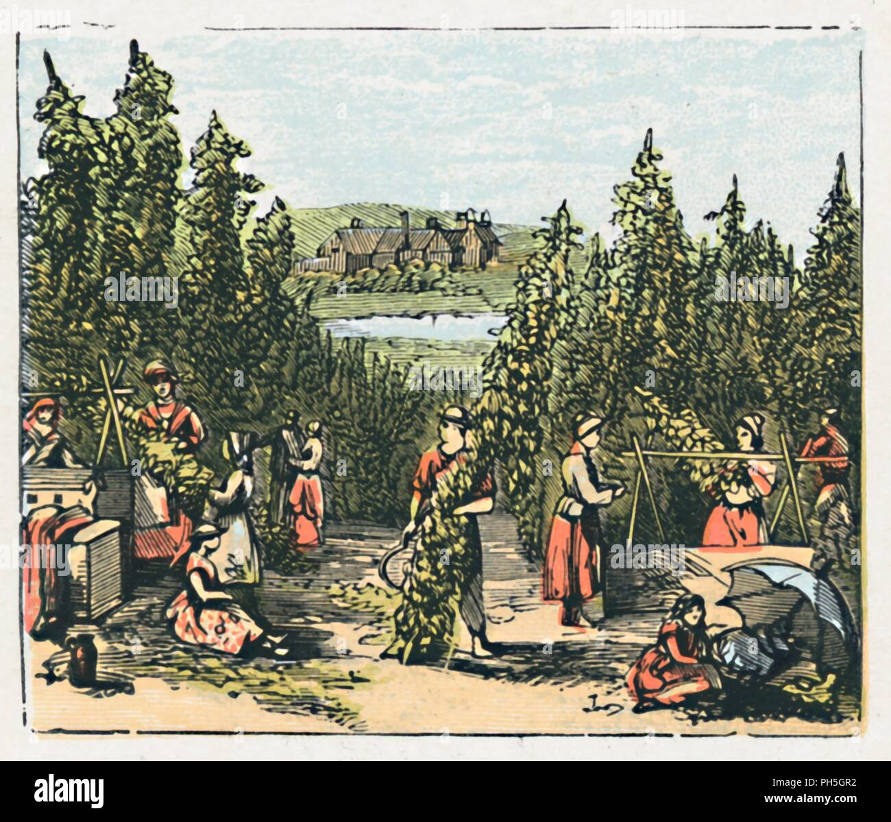 'Maidstone', c1910. 'One of the centres of the Hop-growing districts. Paper. Agricultural Implements. Brick and Cement Works. Population, 37,210'. Card from a game 'containing views of the chief towns in each county, their products & notable buildings etc, beautifully printed in colours'. From The Counties of England - A Geographical Game. [John Jaques & Son, Ltd., London]. Stock Photo