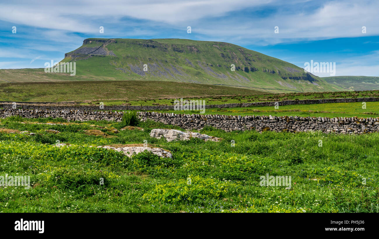 Yorkshire Dales landscape between Halton Gill and Horton in Ribblesdale with the Pen-Y-Ghent in the background, North Yorkshire, England, UK - Stock Image