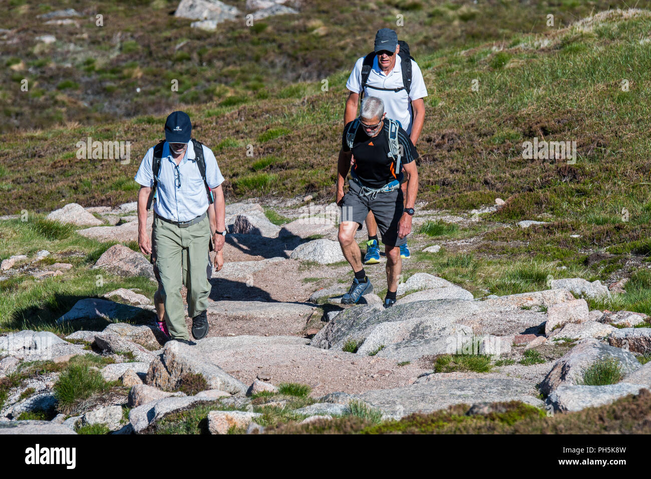Four Tourists With Backpacks Walking On Mountain Path In Spring