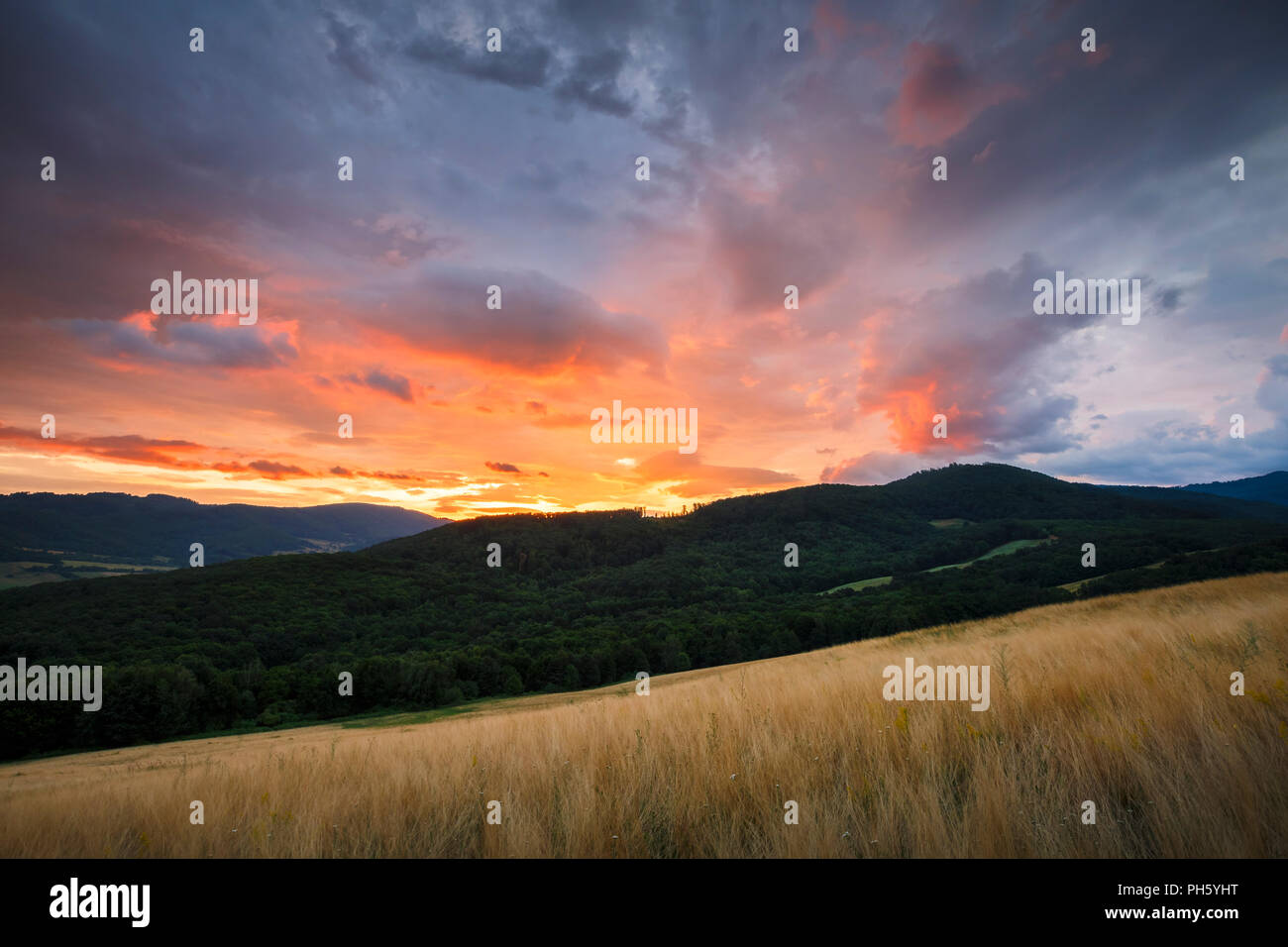 Rural landscape with pastures and forests in the valley of Ipel river in southern Slovakia. - Stock Image