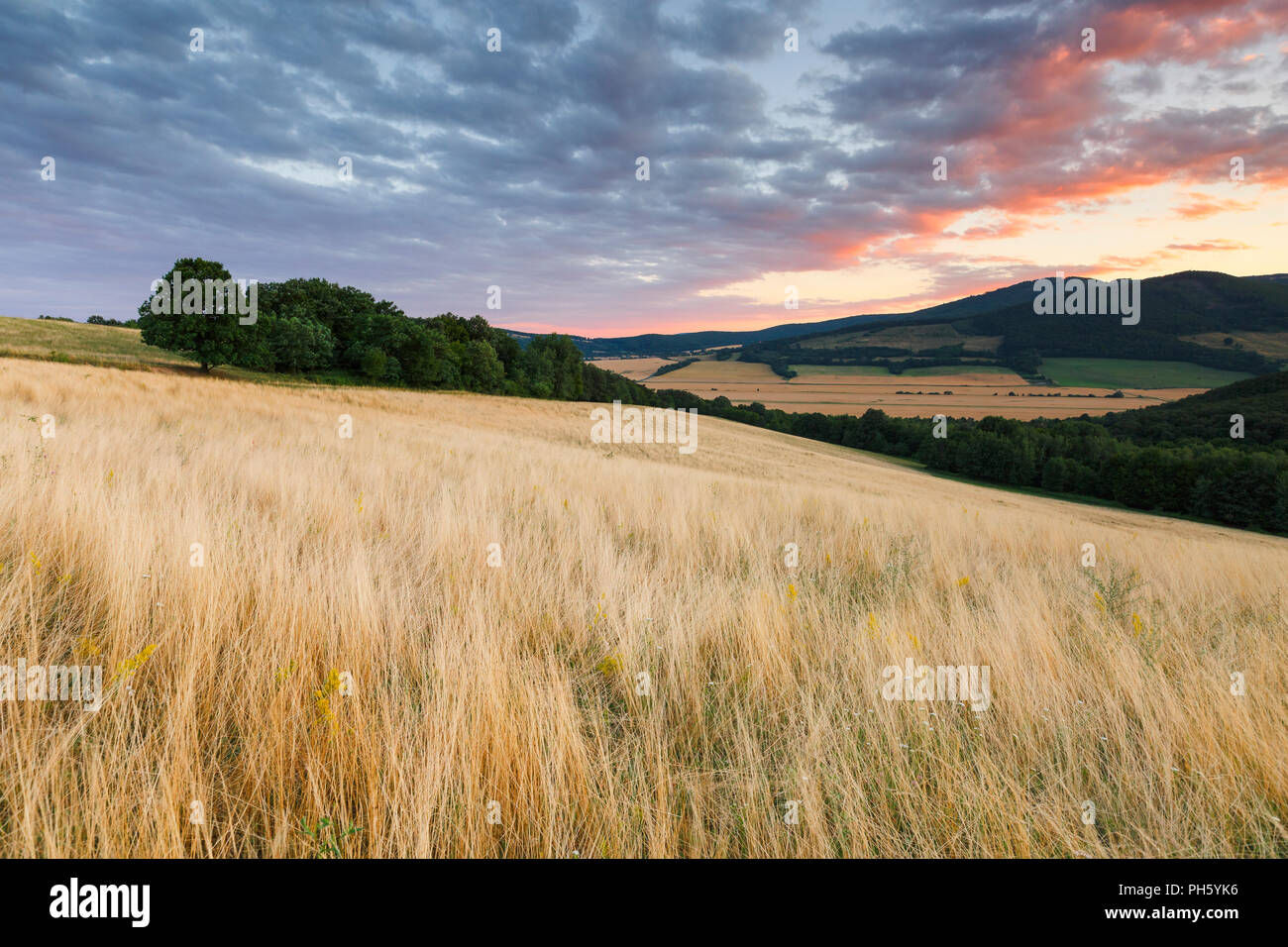 Rural landscape with pastures, fields and forests in the valley of Ipel river in southern Slovakia. - Stock Image