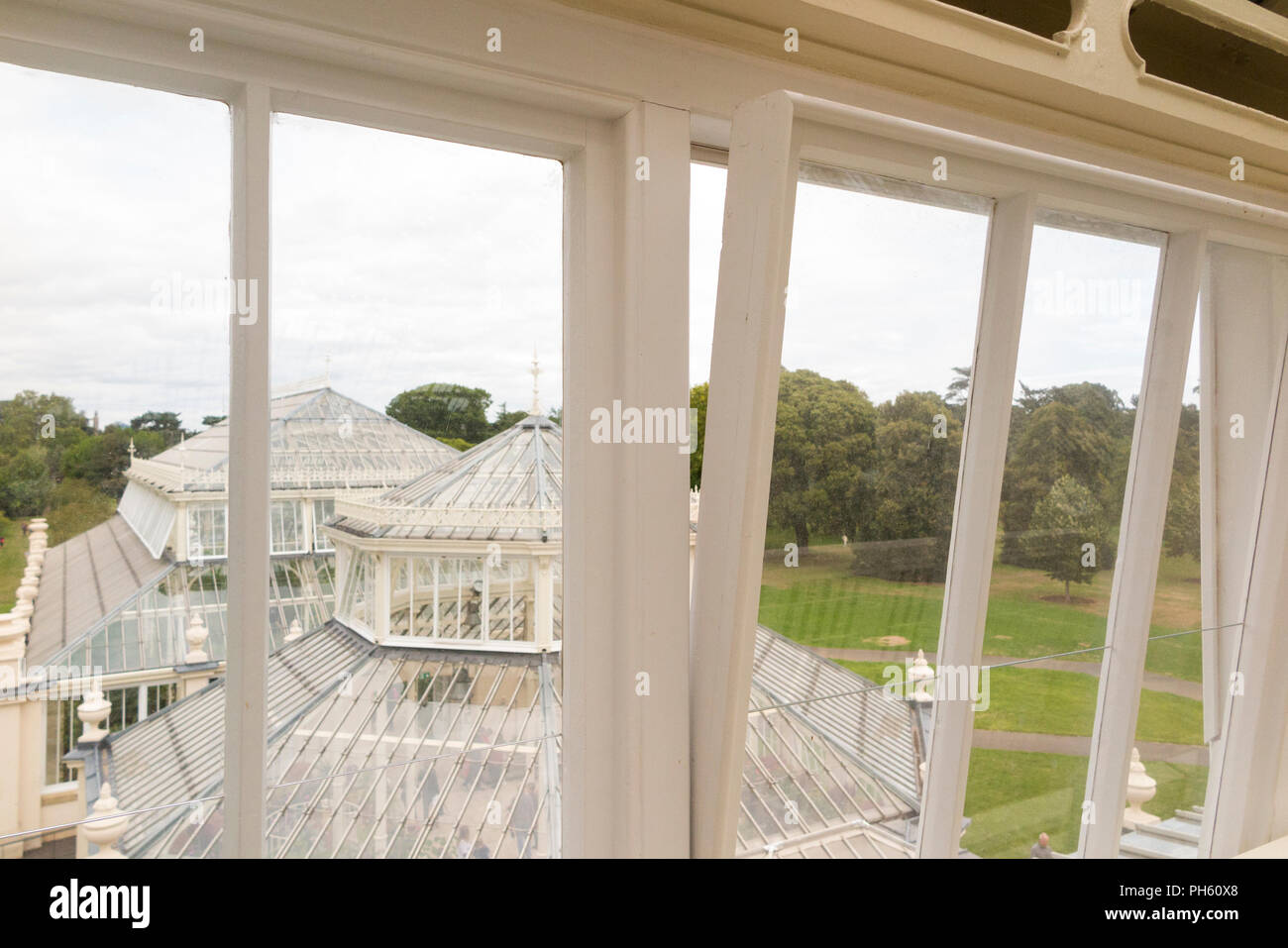 New glazing wooden / wood / timber replacement glazed windows in the restored Victorian Temperate House at the Royal Botanic Garden, Kew. London. UK Stock Photo