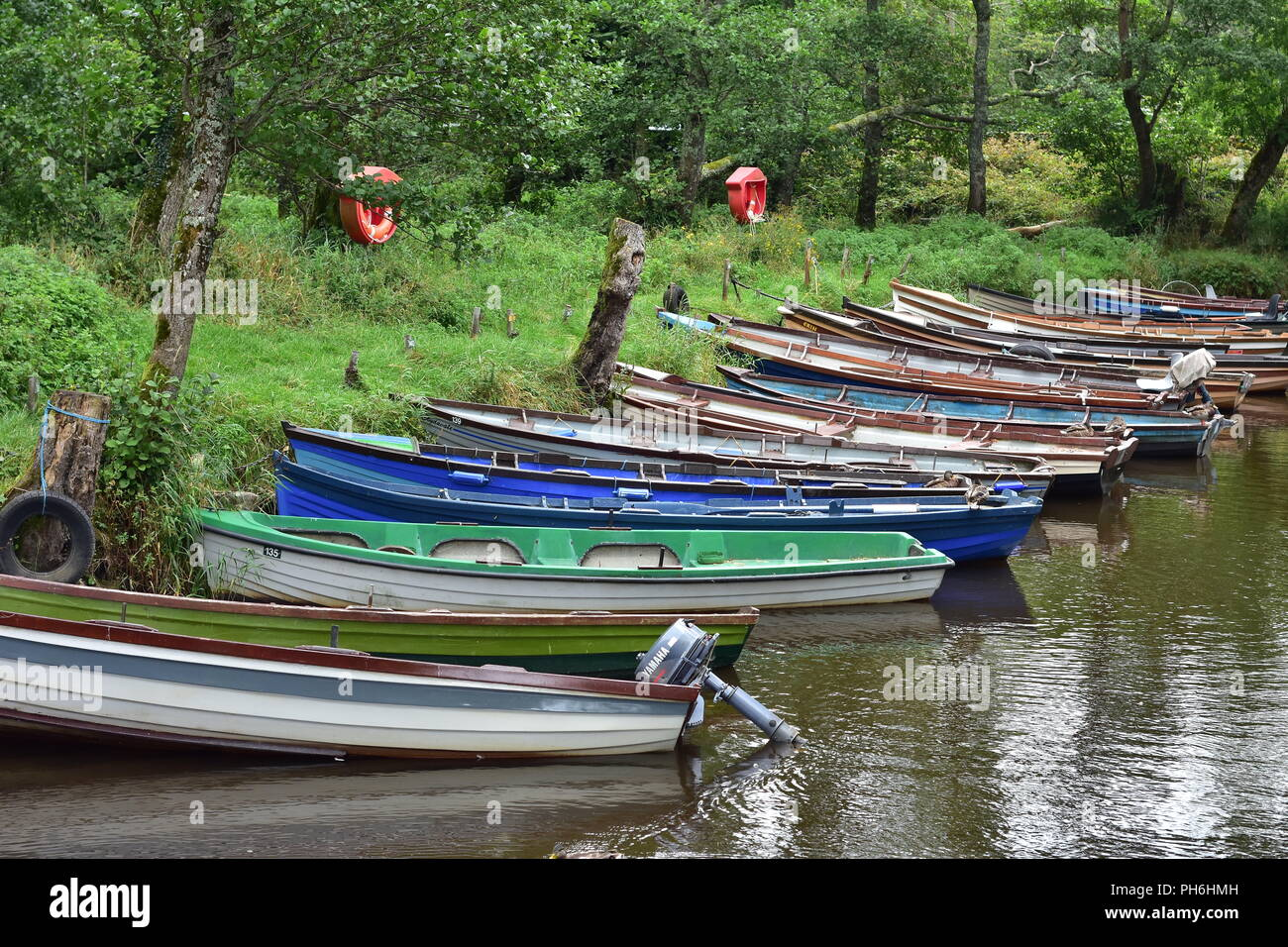 Clinker boats on calm river tied to bank covered with greenery. Life saver rings on stands are clearly visible due to color contrast. - Stock Image