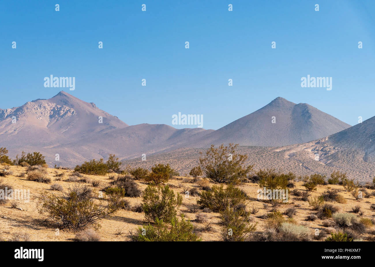 The California Mojave Desert under a bright blue sky near Walker Pass in Kern county. - Stock Image