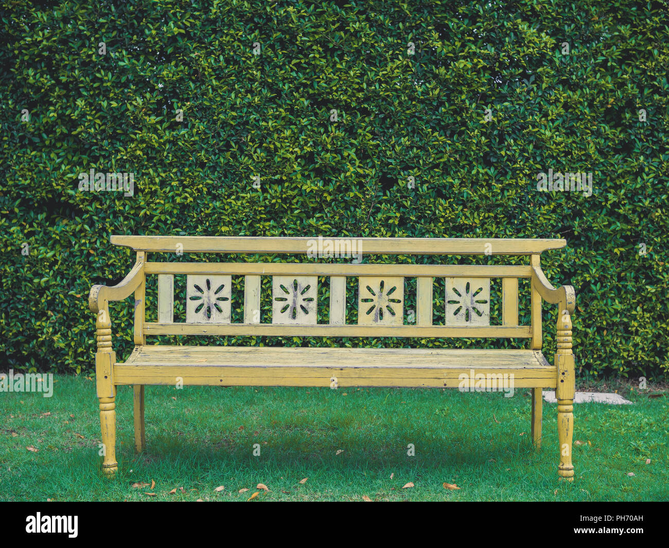 Admirable Yellow Old Vintage Wooden Bench On Green Grass And Green Onthecornerstone Fun Painted Chair Ideas Images Onthecornerstoneorg