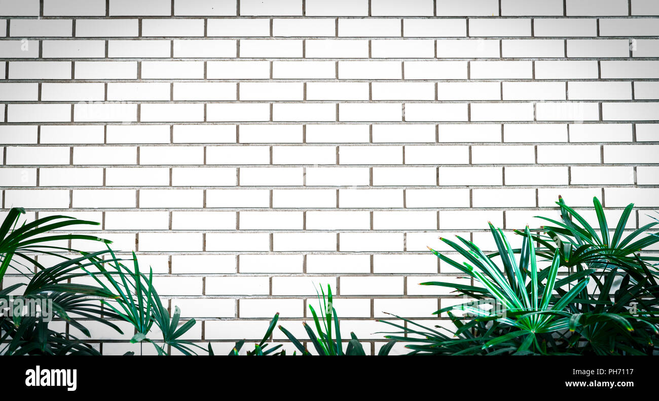 Empty Frame Brick Wall Stock Photos & Empty Frame Brick Wall Stock ...