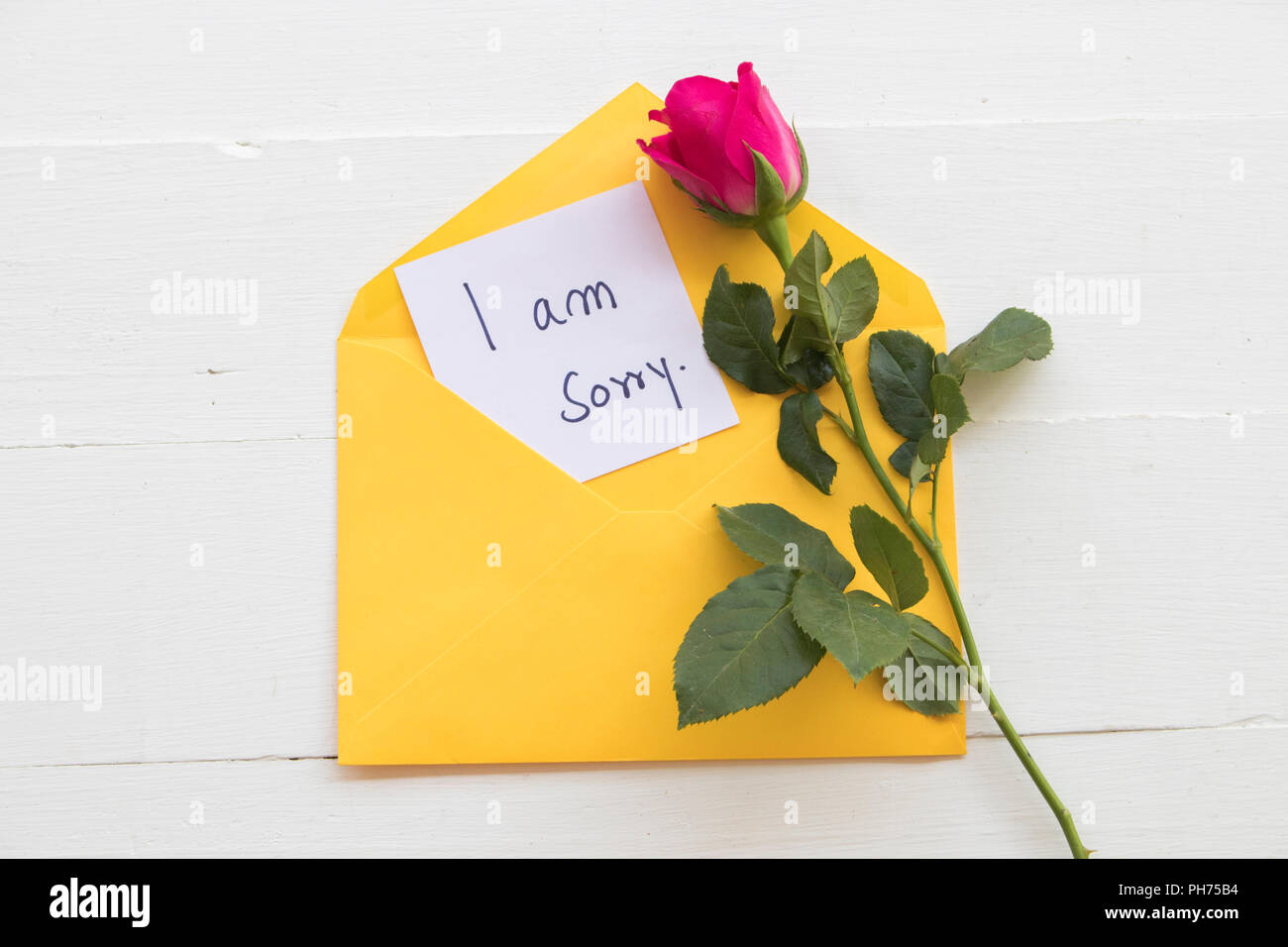 i am sorry message card handwriting in yellow envelope with red rose flower on background white wood