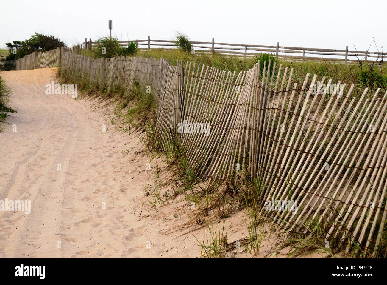 Well traveled sandy path through the sand dune - Stock Image