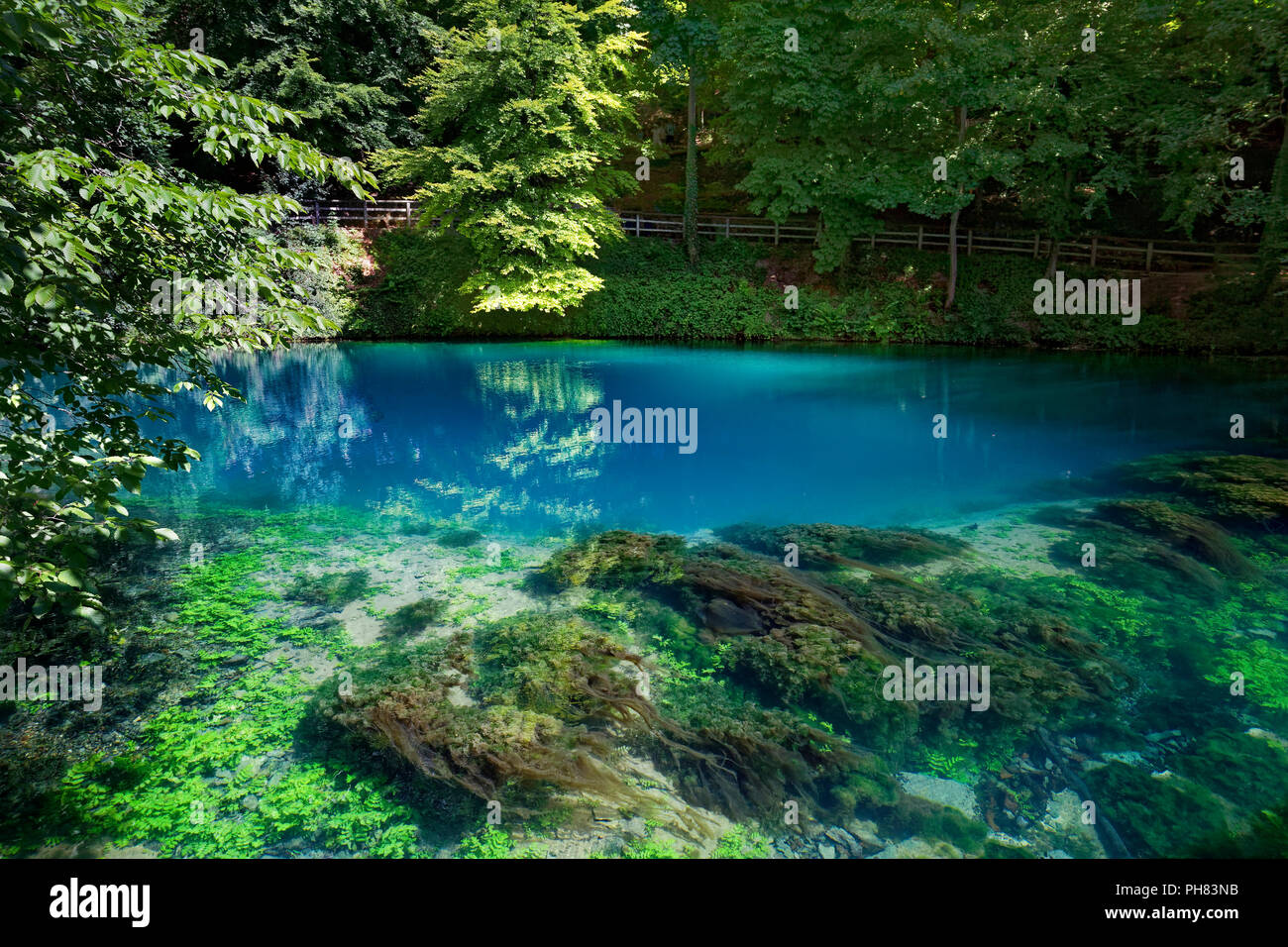 Blautopf, karst spring, algae, Blaubeuren, Alb-Donau-Kreis, Swabian Alb, Baden Württemberg, Germany Stock Photo