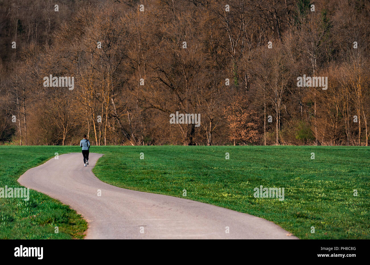 Autumn forest, a green meadow and an alley perfect for running or walking outdoors, in nature, in the fresh air, near Schwabisch Hall town, Germany. - Stock Image