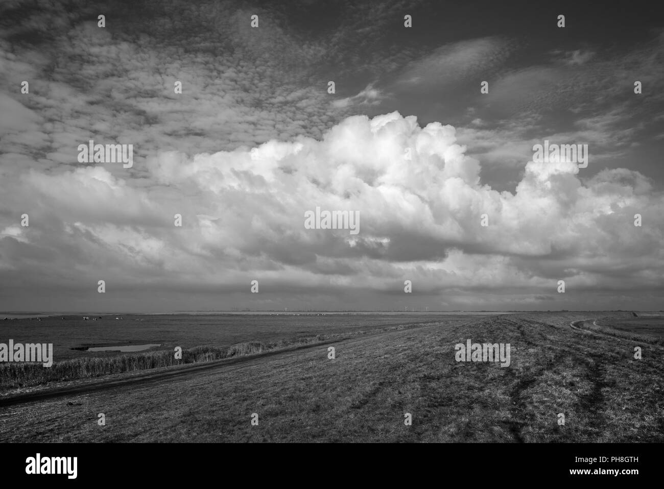 The North Sea - dyke scenery near Cuxhaven - Stock Image