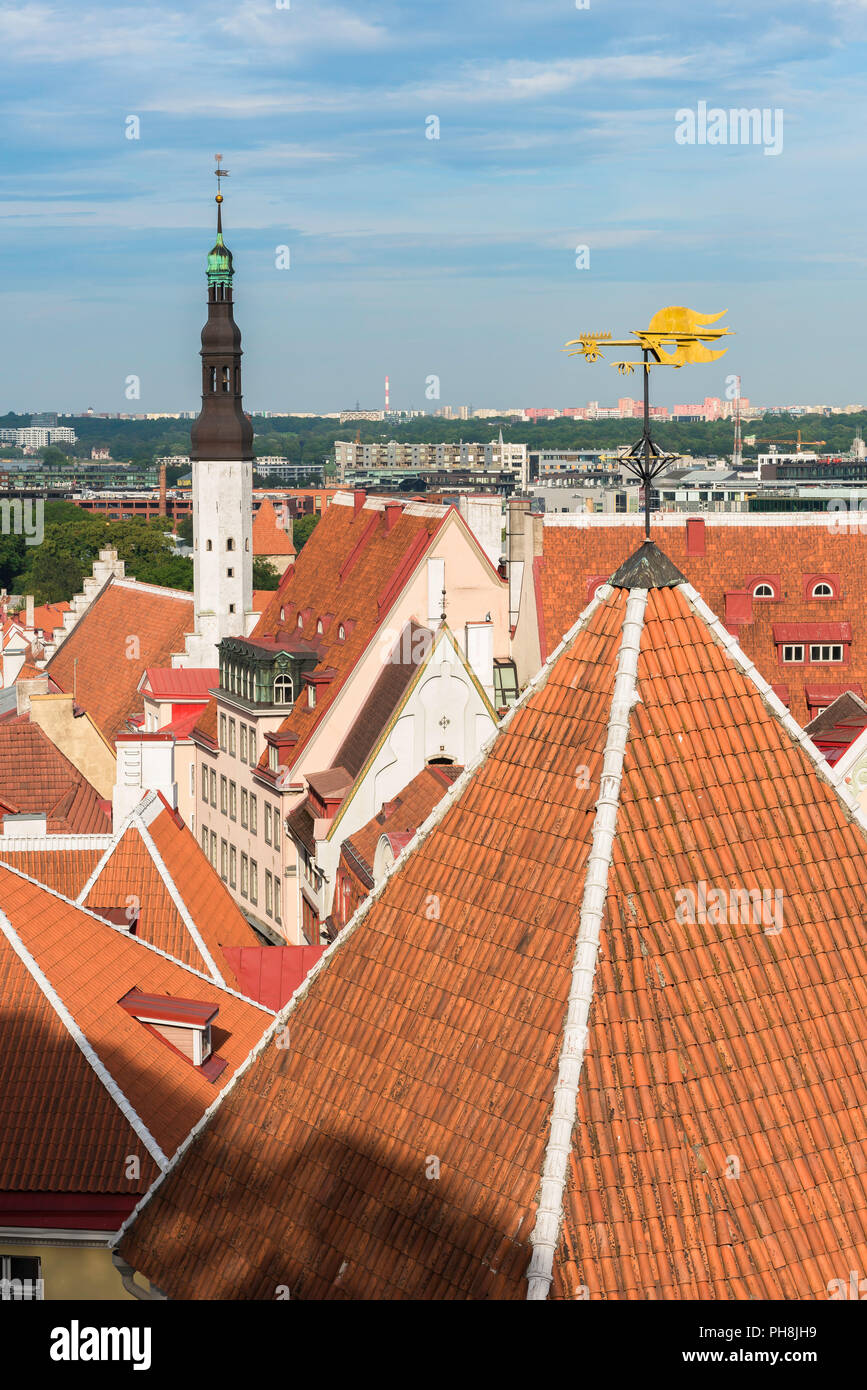 Tallinn roof, view across the orange tiled roofs of the medieval Old Town quarter in the centre of Tallinn, Estonia. Stock Photo