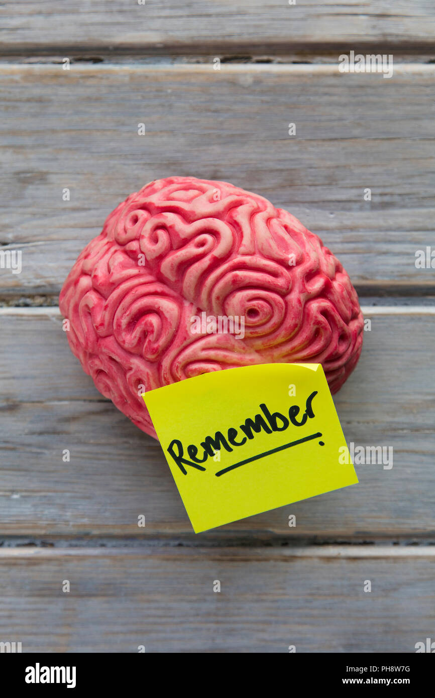 Remember label stuck on a brain Stock Photo