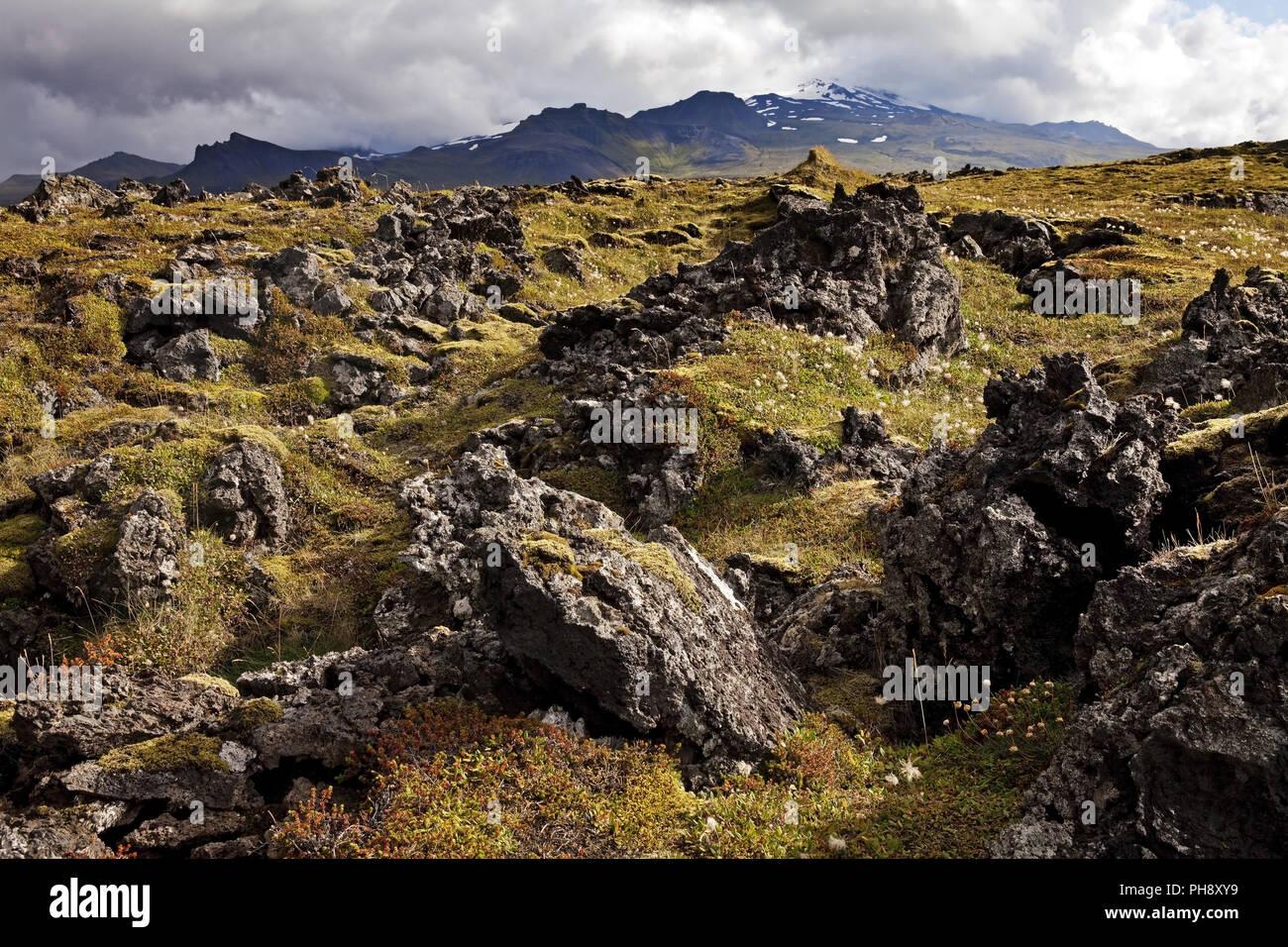 Neshraun lava field, Snaefellsnes, Iceland - Stock Image