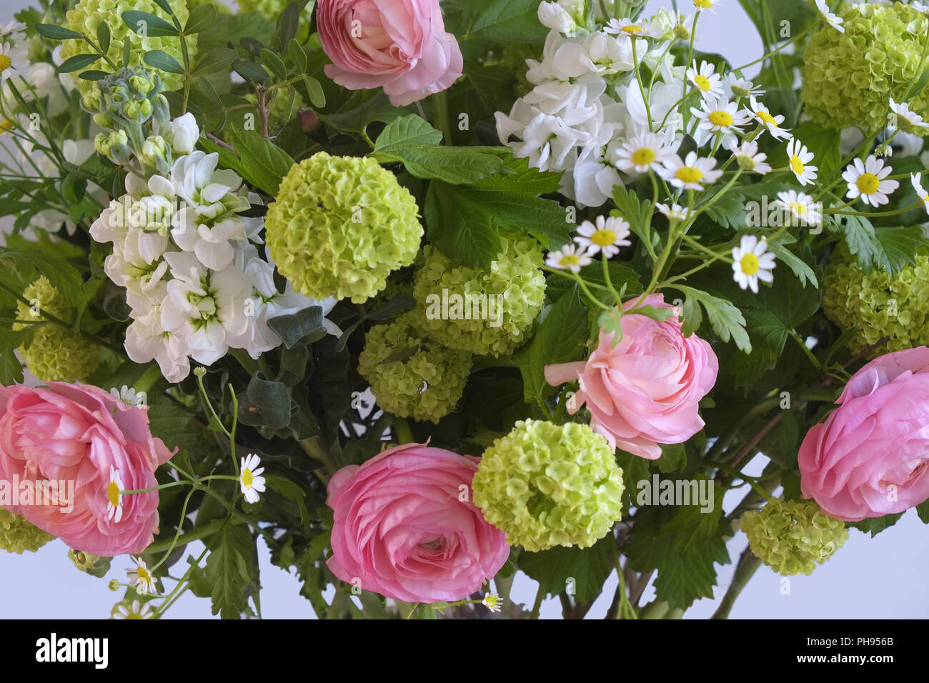 Spring Bouquet - Stock Image