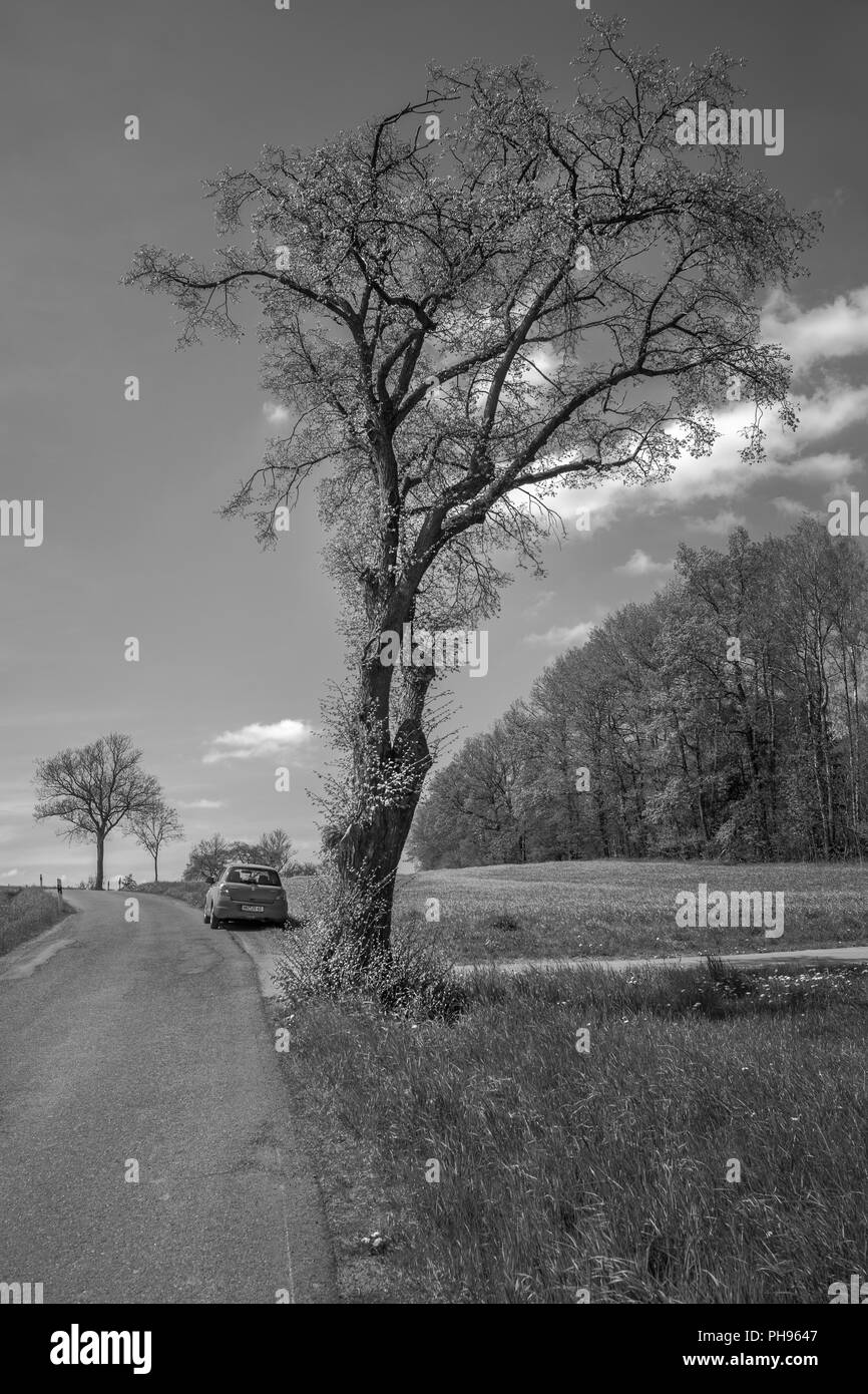 Parked at the country road. . . - Stock Image
