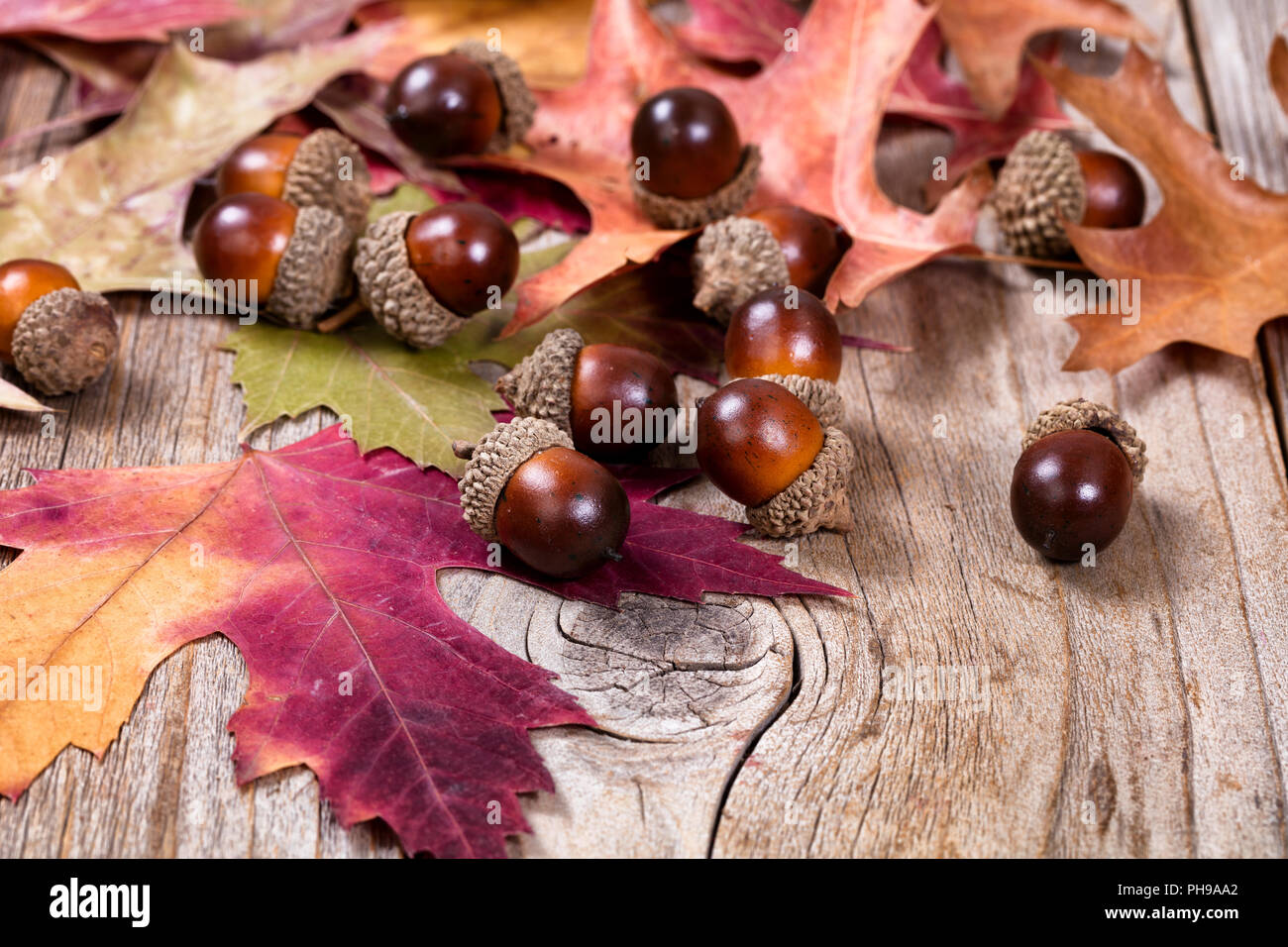 Seasonal Autumn Leaf And Acorn Decorations On Rustic Wooden Boards