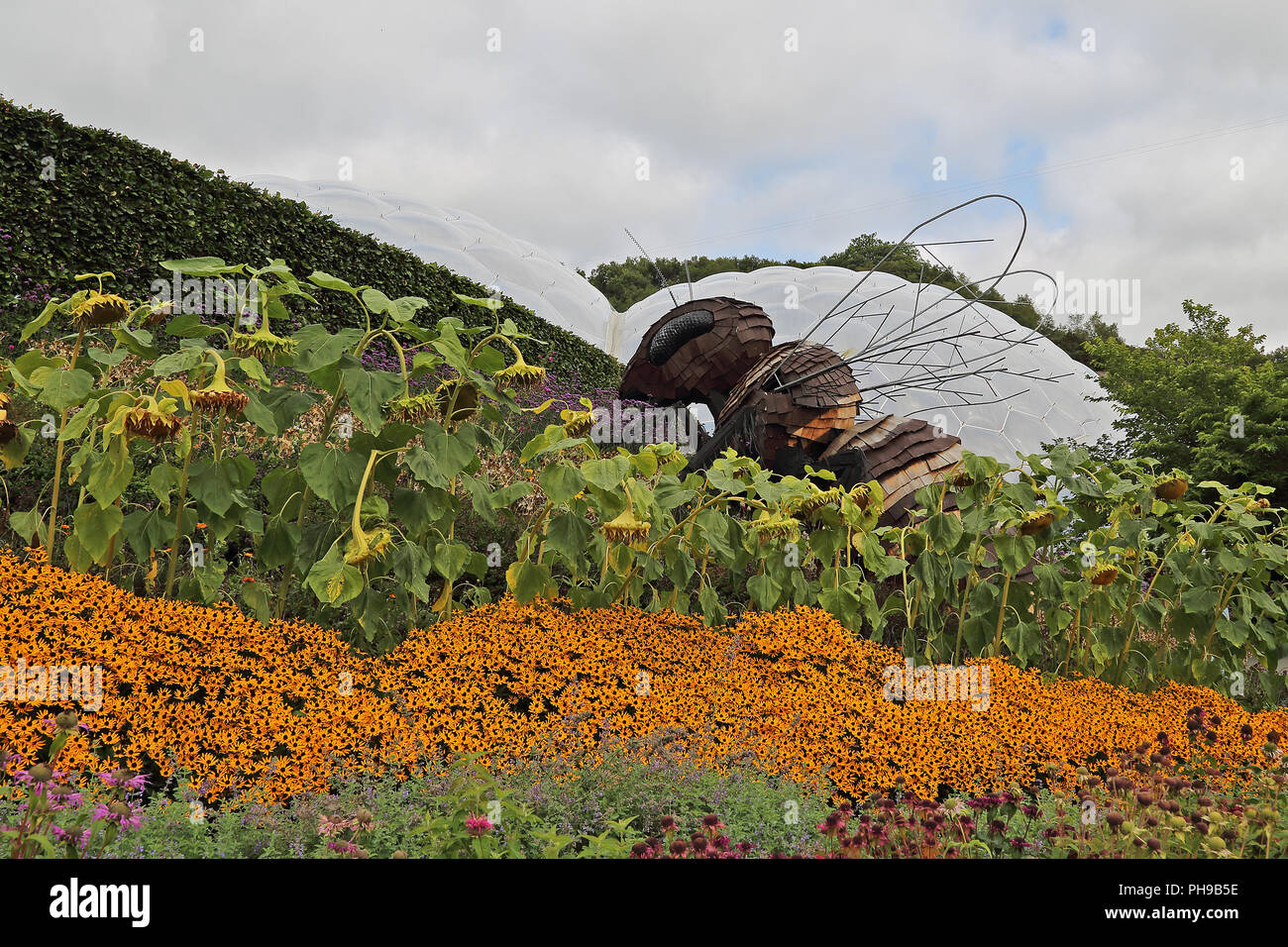 A large model of a bee at the Eden Project, St Blazey, Cornwall, UK - Stock Image
