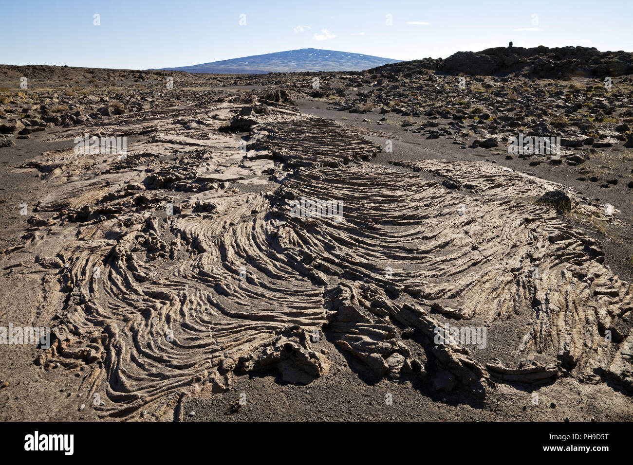 pahoehoe lava and shield volcano Skjaldbreidur, Iceland - Stock Image