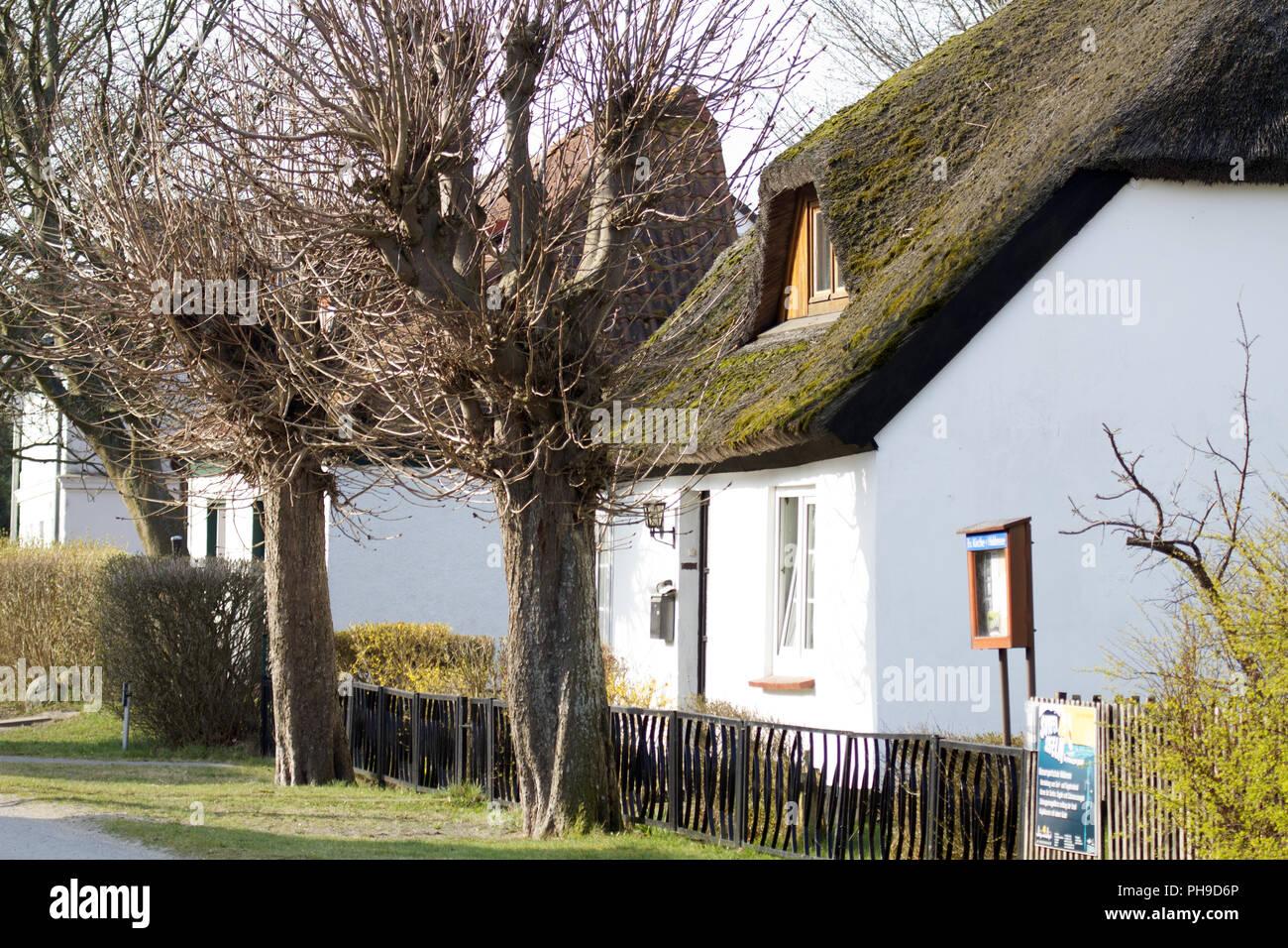 Vitte, Hiddensee, Ostdeutschland, Ostsee - Stock Image