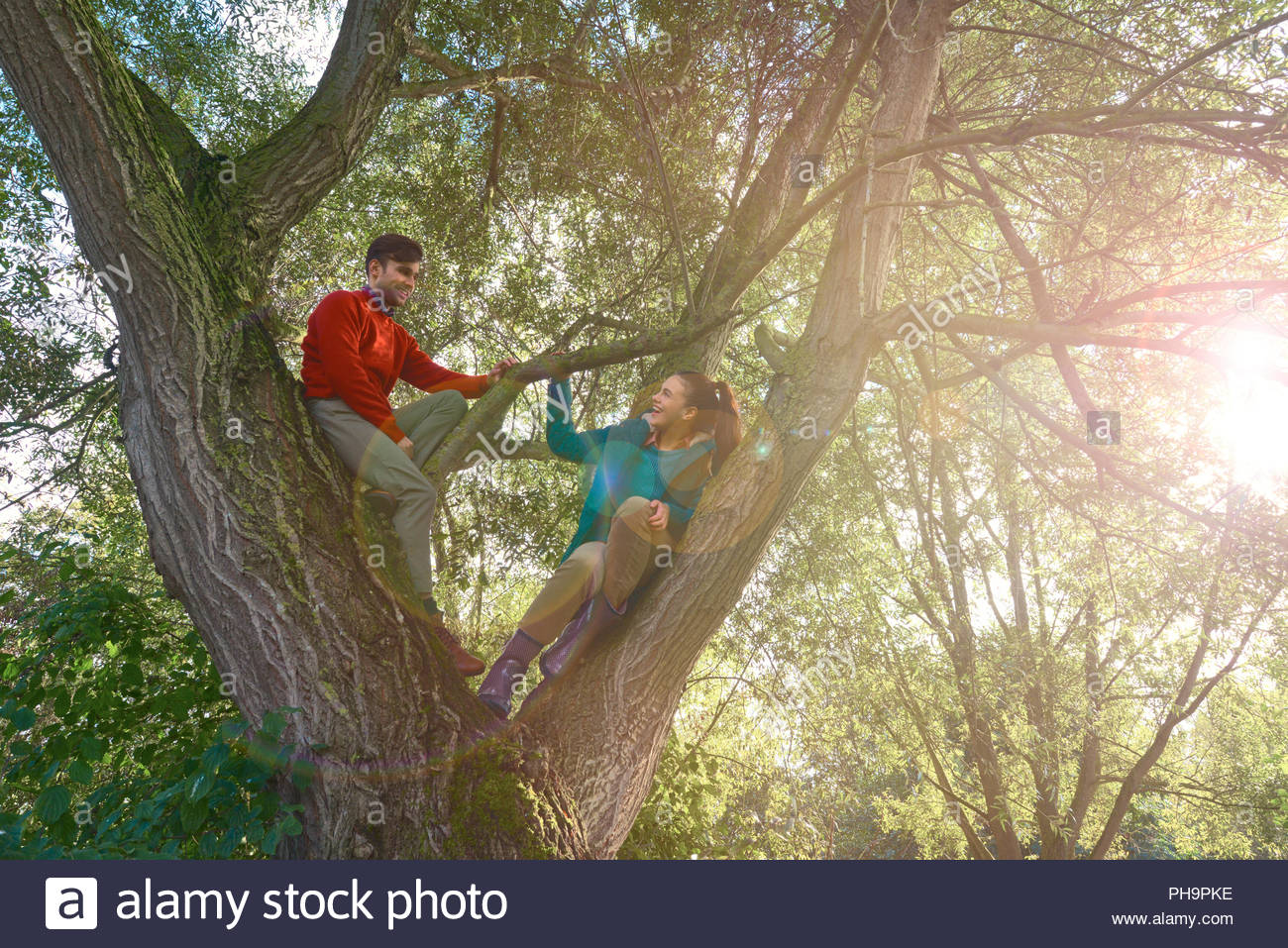 Young couple climbing tree together. - Stock Image