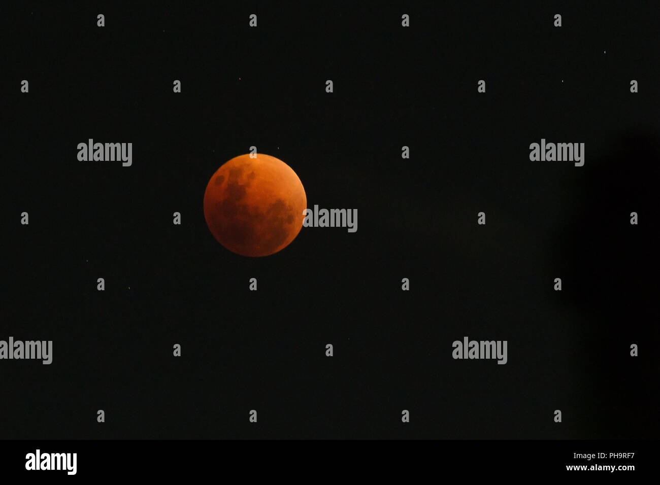 Moon view in the peak (umbra) of period of rare lunar eclipse phenomena which named Super Blue Blood Moon. The moon surface was fully covered by the e - Stock Image