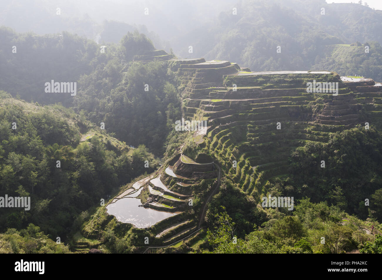 Rice terraces around Banaue Luzon Island, Philippines. - Stock Image