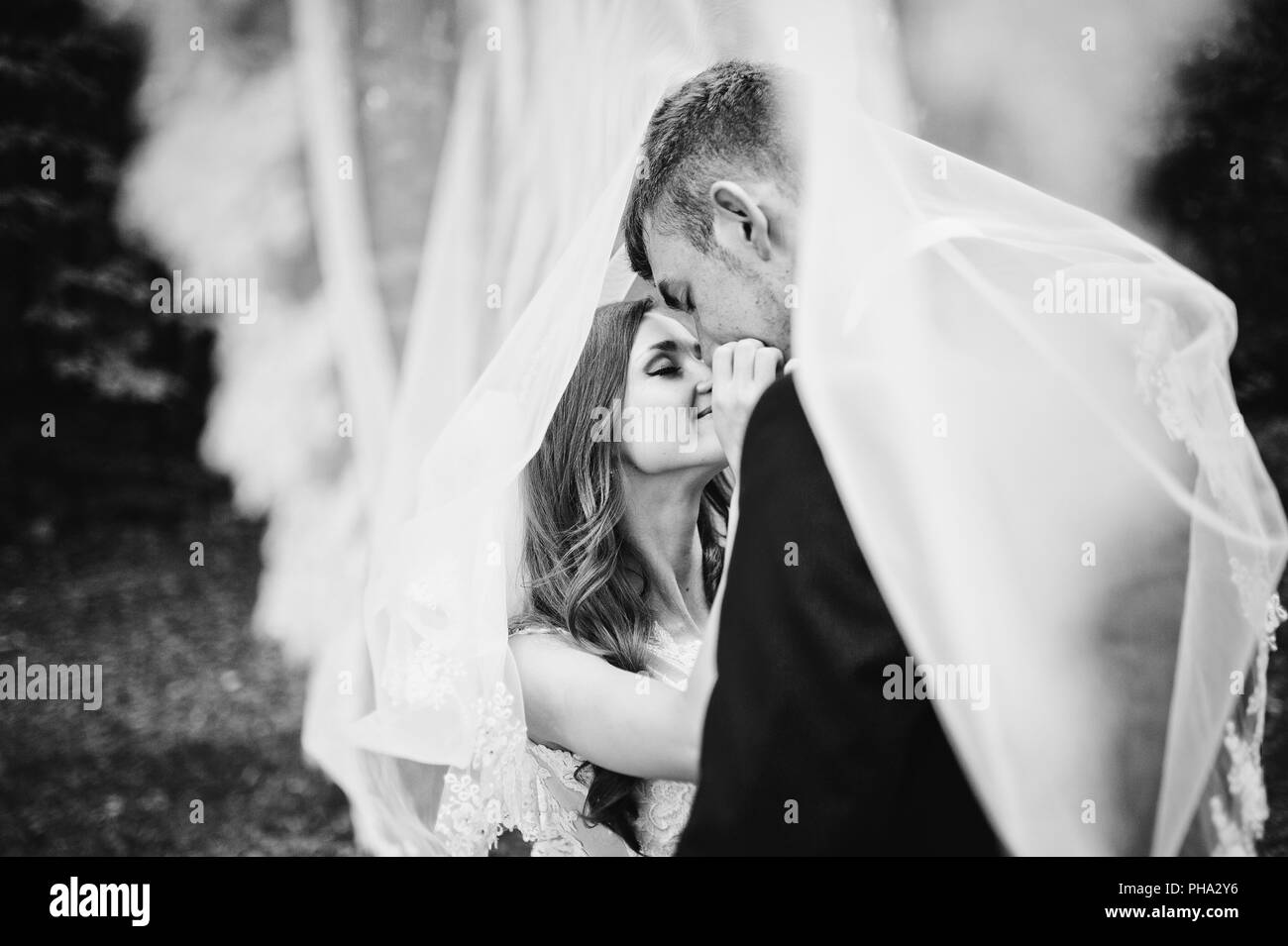 Young wedding couple under veil looking each other - Stock Image