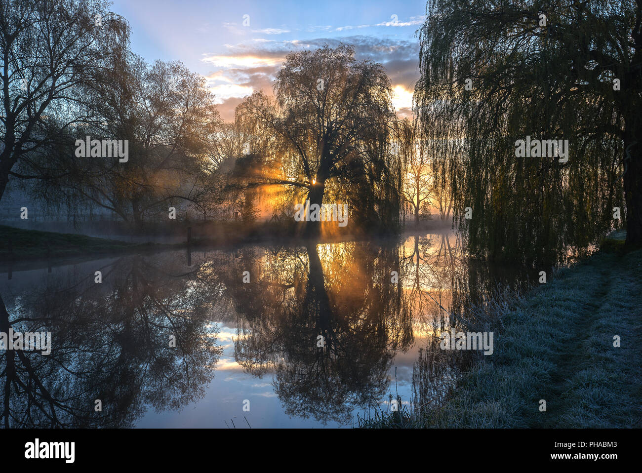 Mystical morning - Stock Image