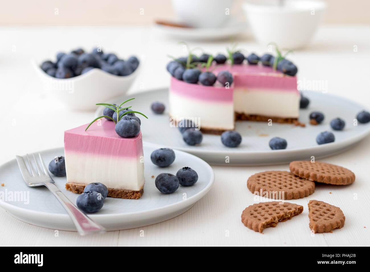 The two-color blueberry mini cheese cake. Round no bake cheesecake, cut portion on small plate with few cookies in the focus. The top of cake decorate - Stock Image